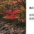2010_10_28_116.jpg