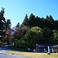 20101029_579.JPG