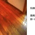 20101027_428.jpg