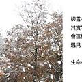20101026_345.jpg