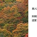 20101026_000.jpg