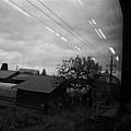 20101030_354.JPG