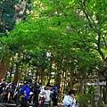 20101029_524.JPG