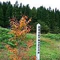 20101027_290.jpg