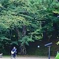 20101025_077.jpg