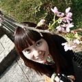20110314_073.JPG