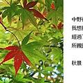 20101025_326.jpg