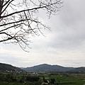 20110501_025.JPG