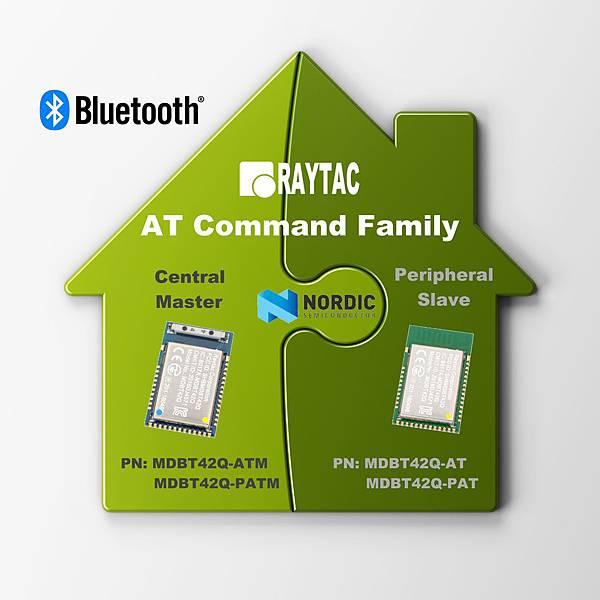 Raytac AT Command Family.jpg