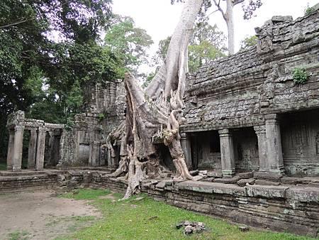 DSCN0987寶劍塔Preah Khan
