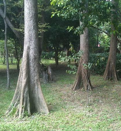 20100902台北植物園_1