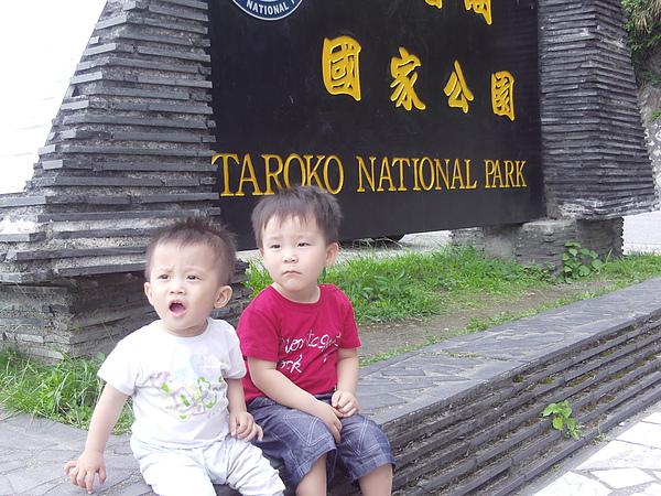 弟弟與表弟