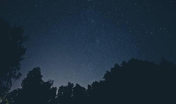sky-night-space-trees-large.jpeg