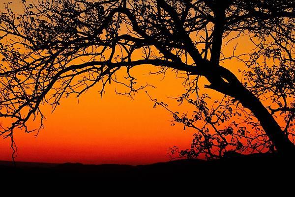 sun-set-1141301_1920