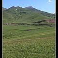 今天沿路都是大草原景觀