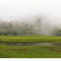 剪接的松蘿湖全景