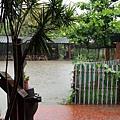 庭院完全淹水