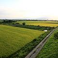 如畫般的田野景色