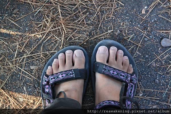 0726一整天火山加古城走下來 我的腳灰頭土臉 鞋子還開口了