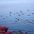 0728 海面上這麼多船 都是去捕魚的嗎