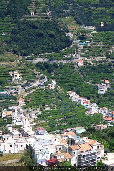 0729 仔細看Ravello的農作種植--梯田