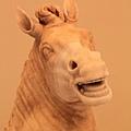 0730 相當有喜感的驢子臉