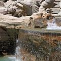 0801 左側人魚神像 試圖馴服桀驁不馴的海馬