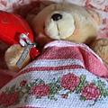 0804 小熊遊世界之 在托斯卡尼的莊園中睡著了