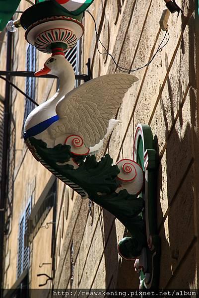 0805 家家戶戶的牆上都有這隻鴨鴨