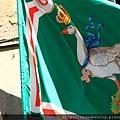 0805 還到處有這種綠色鴨鴨旗