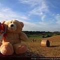 0807 小熊遊世界之--Rocco di Polli 牧草田