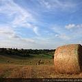 0807 在夕陽餘暉映照下 這片田野顯得更美