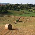 0807 這些大捆牧草真是太可愛了 遠看好像小積木一樣