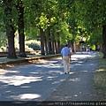 0811 想換一條路走回車站 發現了沿著城牆的林蔭大道 又驚又喜