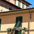 0811 綠色遮陽板和小花台  好歐洲