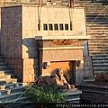 早上在外面看到的人面獅身像 已經進場等待.JPG
