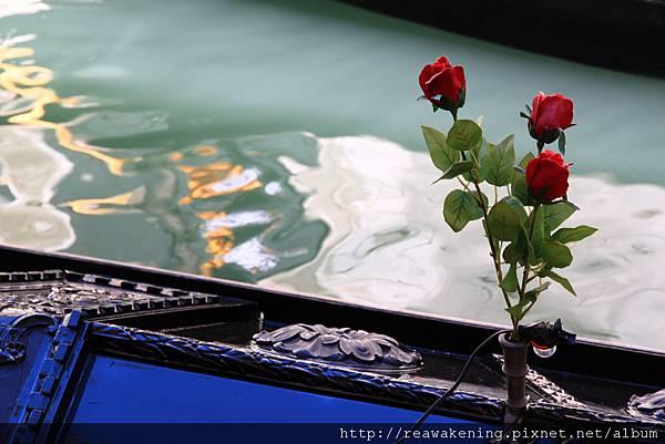 貢多拉船頭的玫瑰 總覺得很像歌劇魅影的甚麼畫面.JPG
