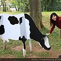 120126 充滿乳牛的一所大學