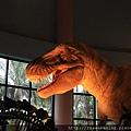 120227 這些恐龍我倒是很有印象