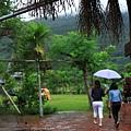 111009 下著雨的濕地果然很濕