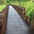 111009 長長的木板林棧道