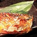120413 烤鯖魚 2