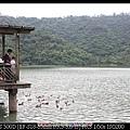 0811梅花湖1