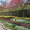 0228 陽明山花季廣場