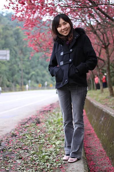 0223山櫻花1