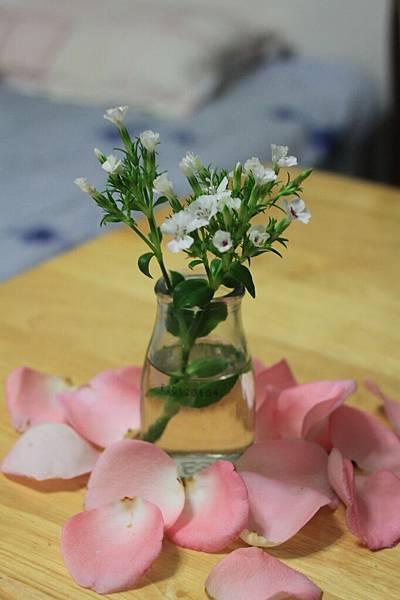 0225插在水瓶裡的白色小花1