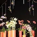 0306蘭花--各種盆栽的佈置