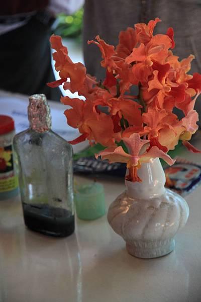 講解種蘭花的原理