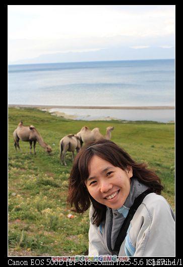 嘿 我終於和駱駝合照了