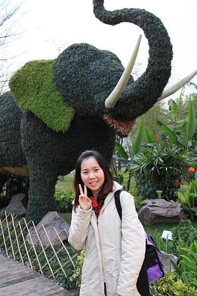 0306各國花卉造景特展--泰國的大象--太可愛囉